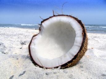 coco-nutricion