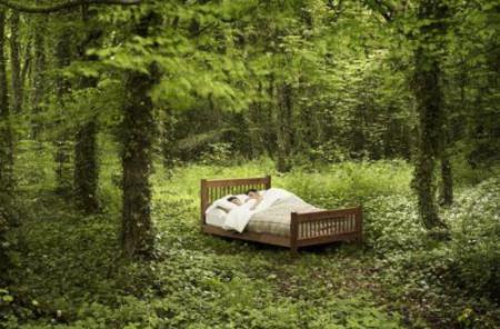 cama ecologica